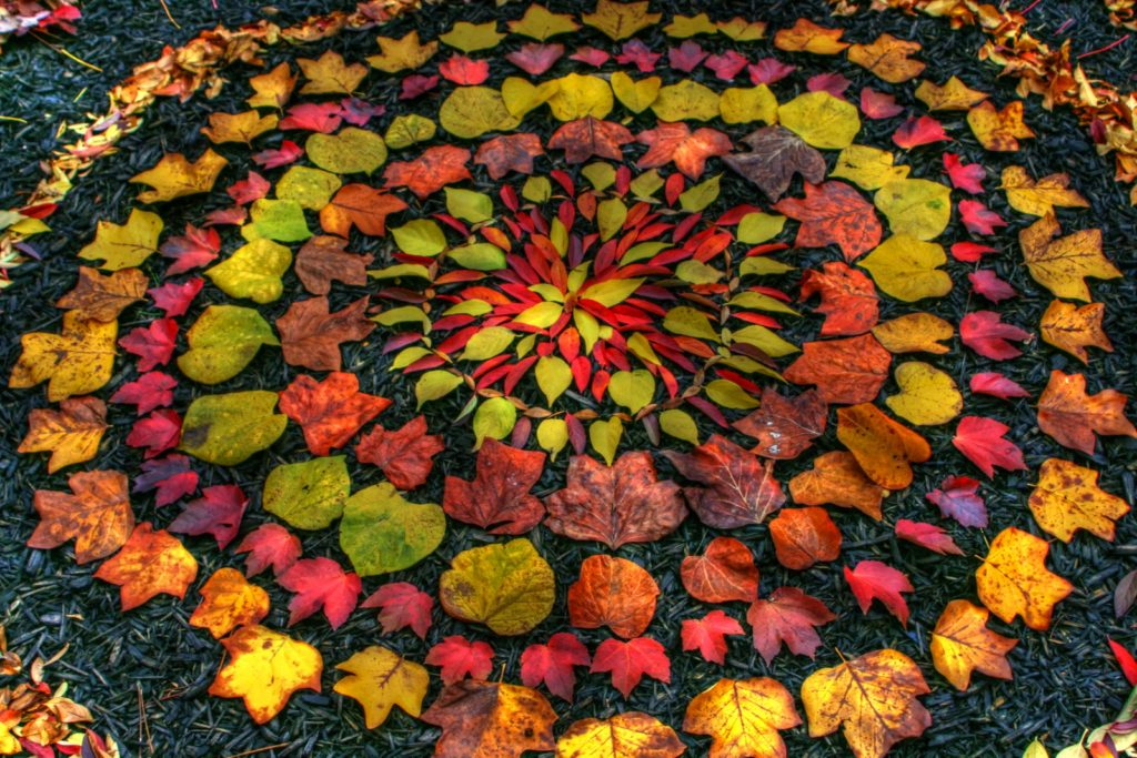Andy Goldsworthy 015